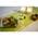 Zusatzbild Einweggabeln Abena BIO braun 16,5 cm lang, 100 Stück