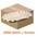 Zusatzbild Einwegteller rechteckig 10,5x17,5x3 cm 2000 Stück