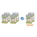 Grundreiniger Linoleum Diversey Jontec Linosafe F1g 6x 5 L