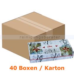 Kosmetiktücher 100er Box, 40 Boxen im Karton
