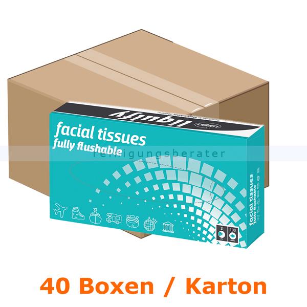 Kosmetiktücher Wepa liquify 2-lagig hochweiß 100er Karton