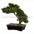 Kunstpflanze Bonsai Sapin Grün