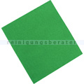 Microfasertuch Rezi, Vliestuch grün 45x40 cm
