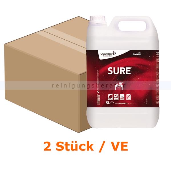 Diversey SURE Grill Cleaner 2 x 5 L Grillreiniger für den täglichen gebrauch 100894371