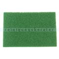 Orbital Exzenter Pad Dr. Rauwald grün 335 x 485 mm