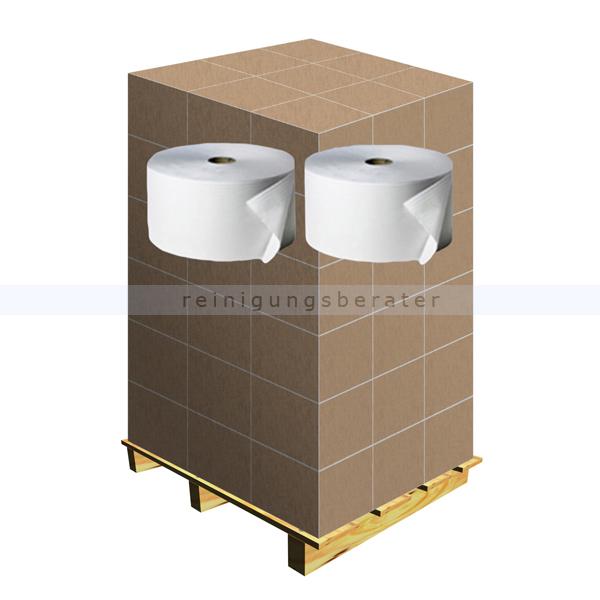 Putztuchrolle Fripa Tissue 2-lagig weiß 570 m, Palette