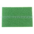 Superpad Numatic Exzenter Pad 30,5 x 45,8 cm grün