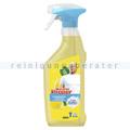 Universalreiniger Mr. Proper Spray Citrusfrische 500 ml